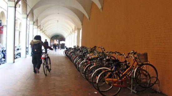 Bologna (Italy)(21) - Bicis...