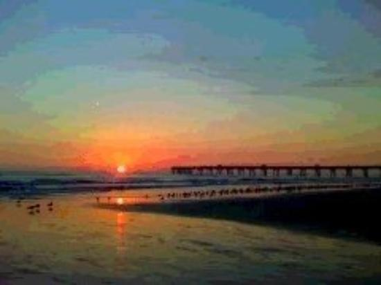 Jacksonville Beach, FL: Jenny Echensburger took this one,,,, She is good..