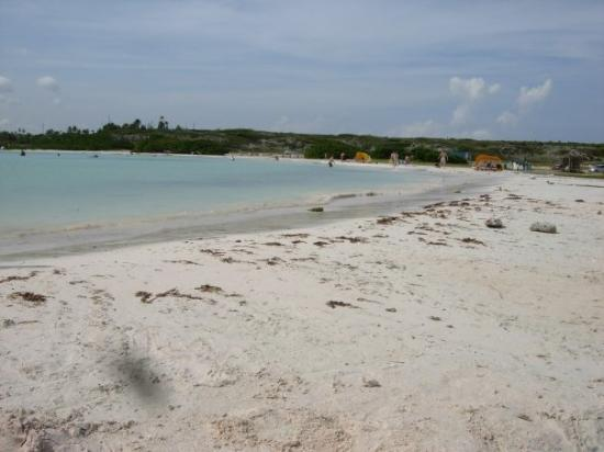 Palm/Eagle Beach, Aruba: Baby Beach, Aruba