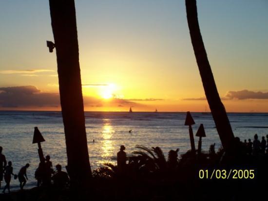 Bilde fra Duke's Waikiki