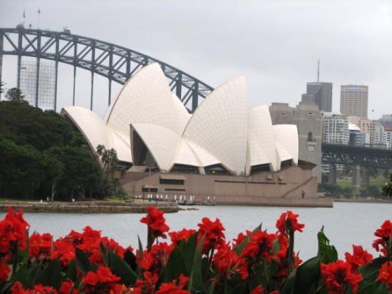 Sydney Opera House: Opera House from the Royal Botanic Gardens