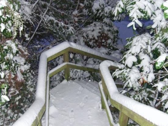 Manchester, WA: snow at home