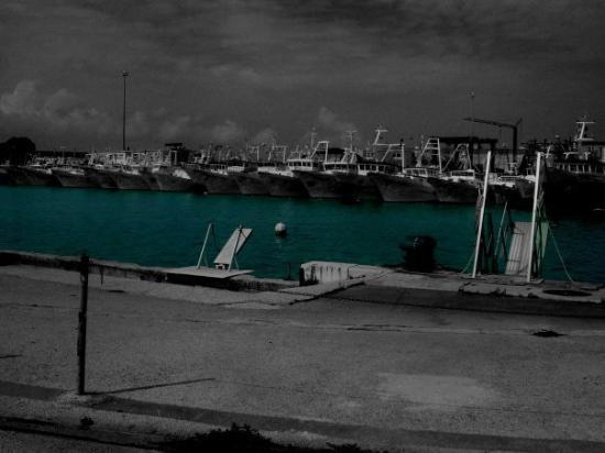 Bilde fra Ancona