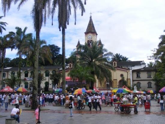 Bilde fra Florencia