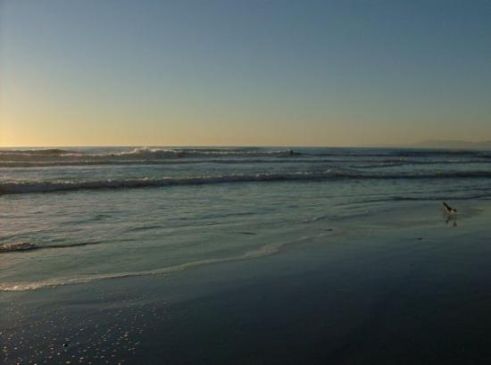 Bilde fra Oceanside