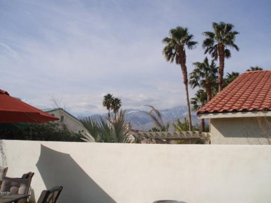 Bilde fra Palm Springs