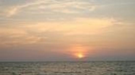 Tampa, FL: Sunset