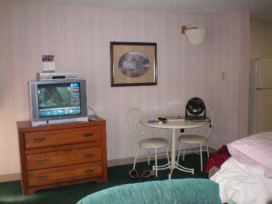 Carr's Northside Cottages & Motel: TV