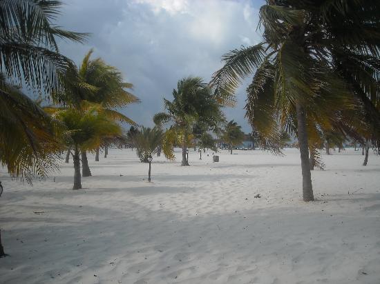 Iberostar Playa Blanca: Sirenis
