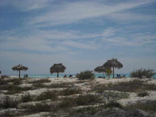 Iberostar Playa Blanca: Paradiso