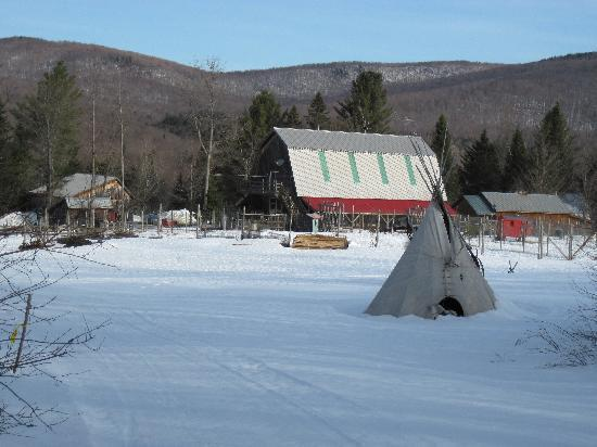 Eden Mountain Lodge: the Foxglove cottage on the right next to the dog sled barn