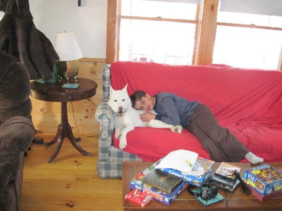 Eden Mountain Lodge: In the cabin with one of the dogs