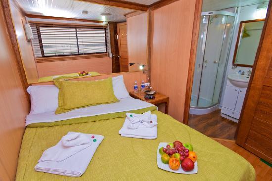 Manatee Amazon Explorer: Matrimonial Cabin