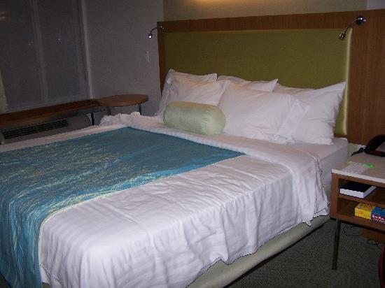 SpringHill Suites Detroit Metro Airport Romulus: king size bed, no smoking