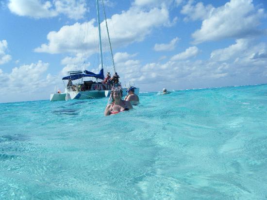 Dexter's Fantasea Tours: Dexter's catamaran