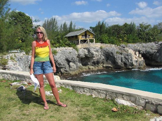 Citronella: Cove house