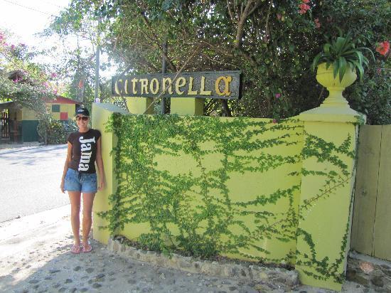 Citronella: front gate