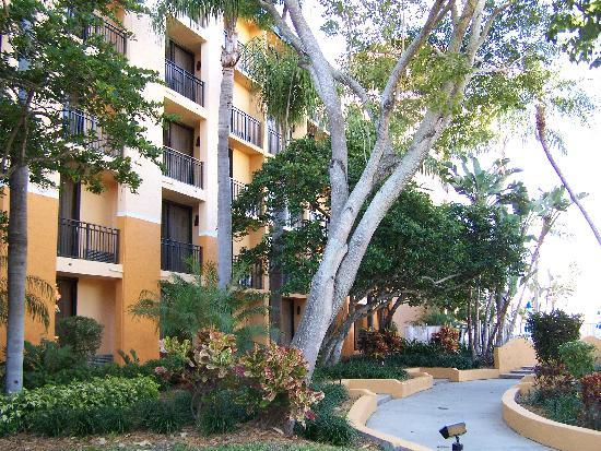 Courtyard Bradenton Sarasota/Riverfront: Courtyard