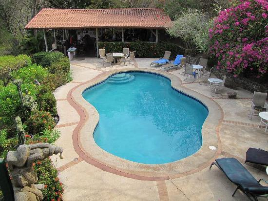 Rancho Armadillo Estate: The Pool