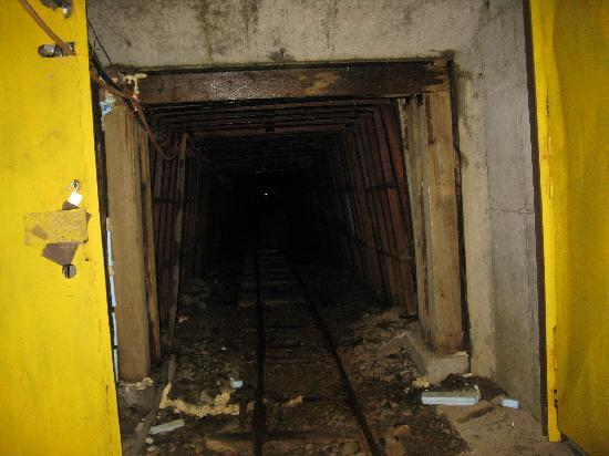 Old Hundred Gold Mine Tour: From tram on ride out