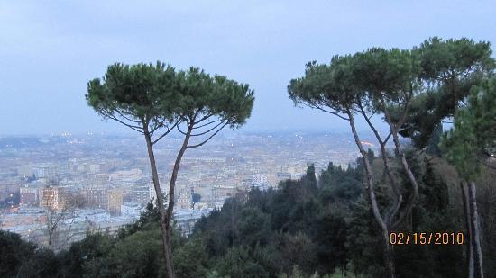 Rome Cavalieri, A Waldorf Astoria Resort: The view