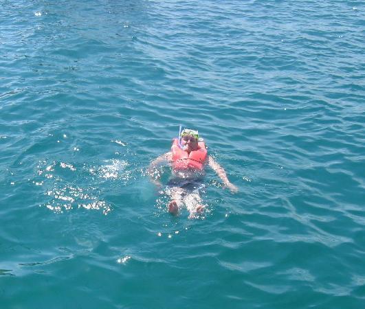 Royal Solaris Los Cabos: snorkelling tour