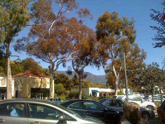 Coast Village Inn: View from Coast Village Road