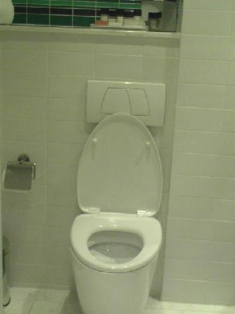 Lanson Place Hotel: clean toilet