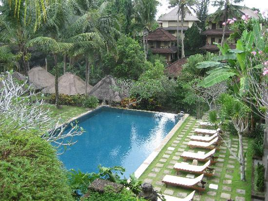 Pertiwi Resort & Spa: Infinity pool by the villas