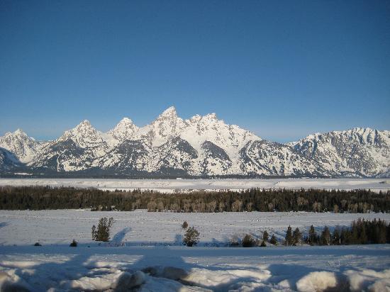 Jackson Hole Eco Tour Adventures: Teton