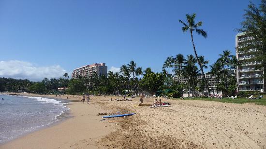 Garden Island Inn Hotel: Kalapaki beach