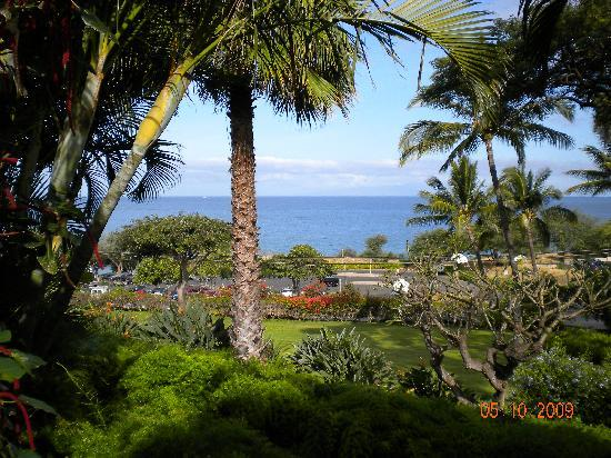 A view from our lanai at Maui Kamaole