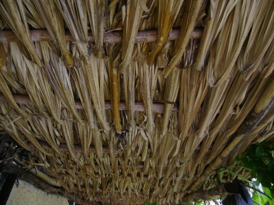 Hotel B&B by Playa del Karma: inside roof area. so beautiful!!