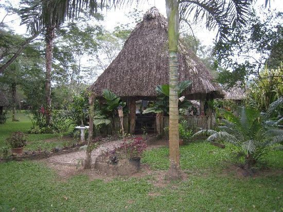 Macaw Bank Jungle Lodge: The restaurant