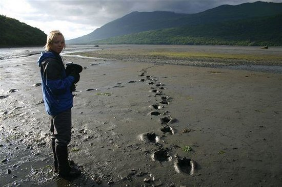 Kodiak Treks: Walking softly through Kodiak bear country