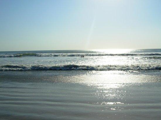 Point Break Surf School: Gorgeous Beach