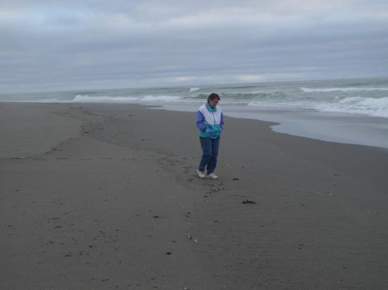Point Arena, CA: Pacific Ocean (2009)