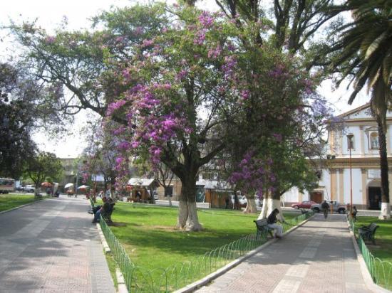 Bilde fra Cochabamba