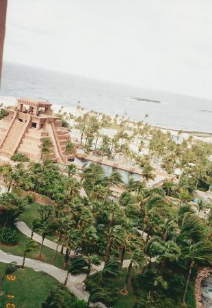 Bilde fra Paradise Island