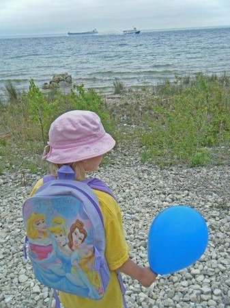 Mackinac Island, MI: Harmony with blue balloon with freighter and ferry on Lake Huron