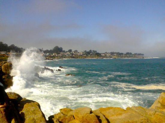 Monterey, CA: 317732739077