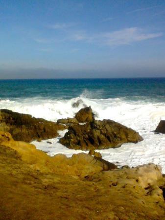 Monterey, CA: 317766306565