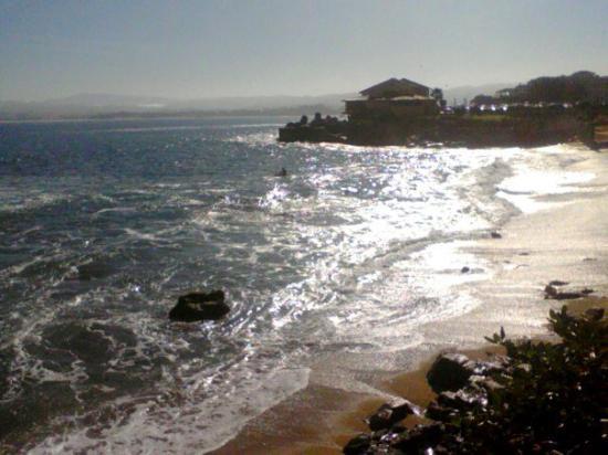Monterey, CA: 317768331397