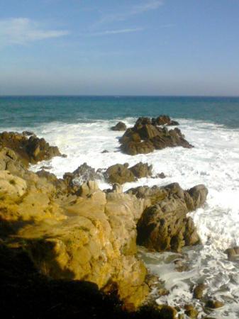 Monterey, CA: 317766649733