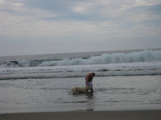 Zihuatanejo, Mexico: Steve found a dog to play with.
