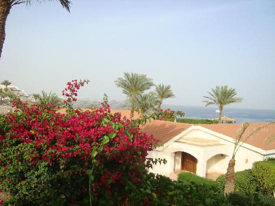 Sheraton Sharm Hotel, Resort, Villas & Spa: view from room terrace over Redsea
