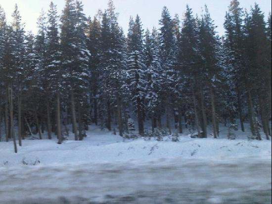 Reno, NV: Snow!