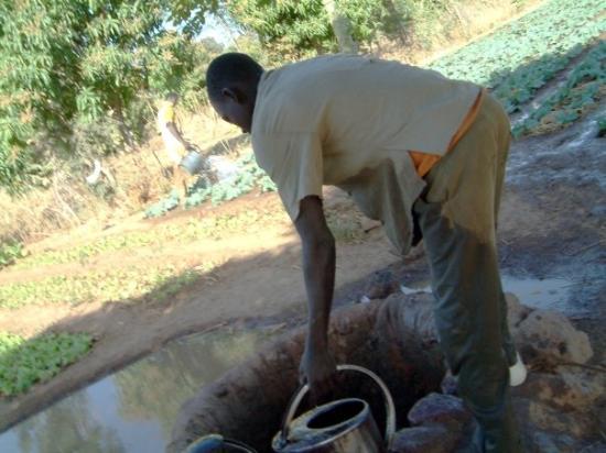 Ouahigouya, Burkina Faso: Les puits pour l'agriculture