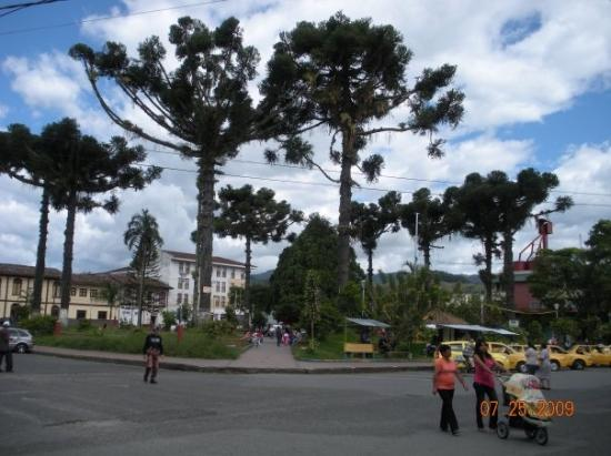 Cali, Colombia: One of the towns square