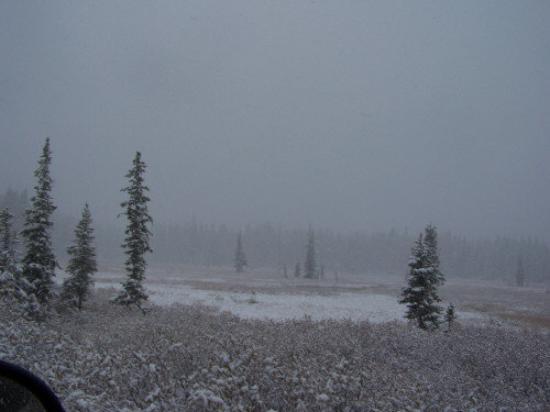Bilde fra West Yellowstone